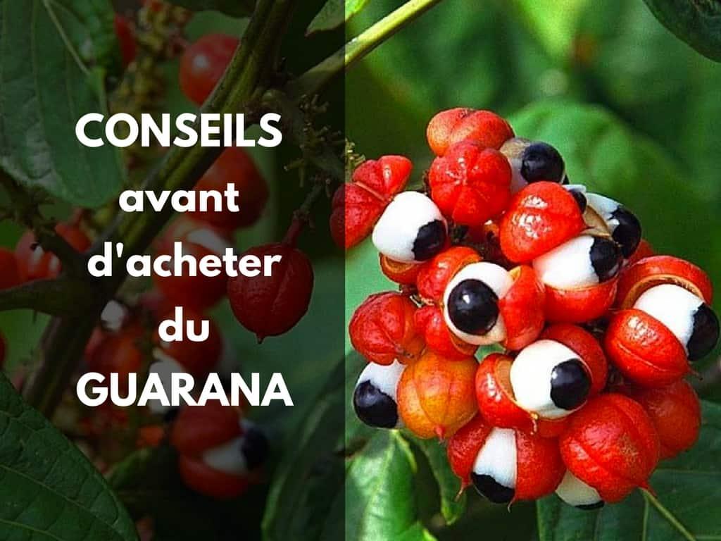 conseil acheter guarana bio pur