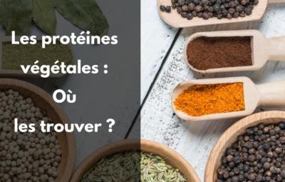 Sources Protéines végétales