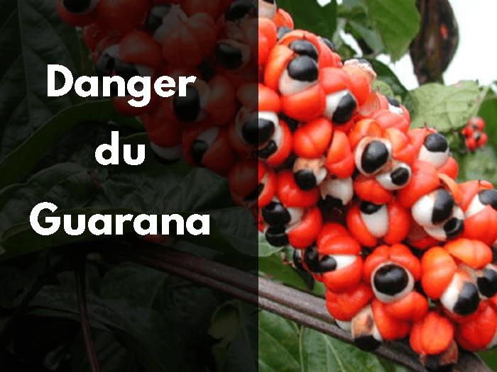 guarana, danger, précaution, effets secondaires, effets indésirables