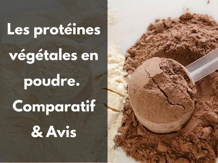 Protéines vegan poudre bio