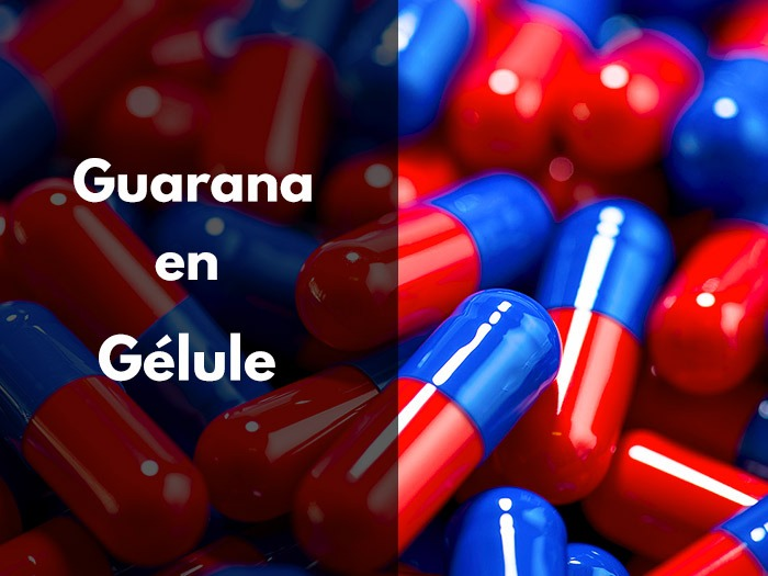 guarana, gélule, poudre