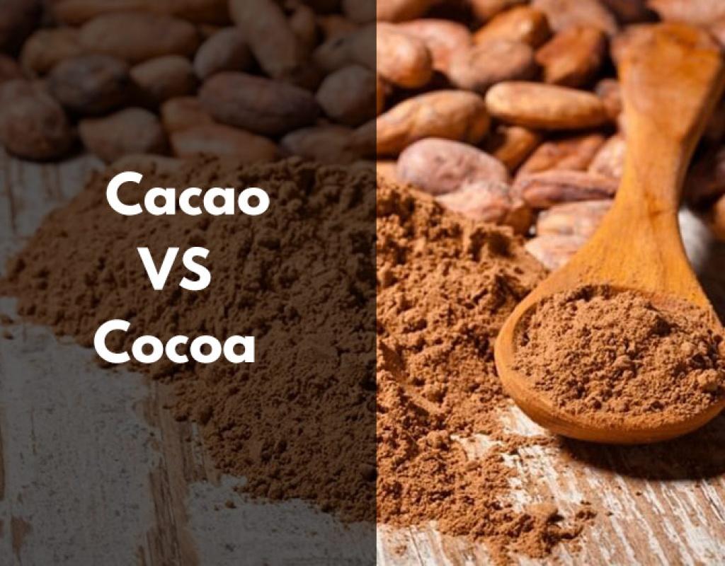 Cacao, cocoa, bienfaits, pur, poudre