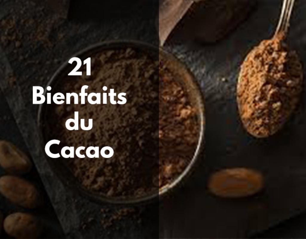 cacao bienfaits, fruit, amer, poudre, nutrition, zinc, magnesium, origine, calorie