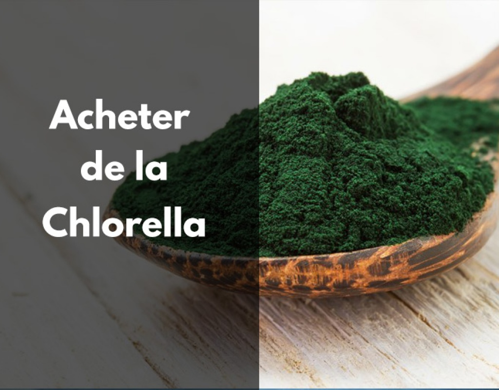 chlorella, achat, acheter, bio, trouver, choisir, avis