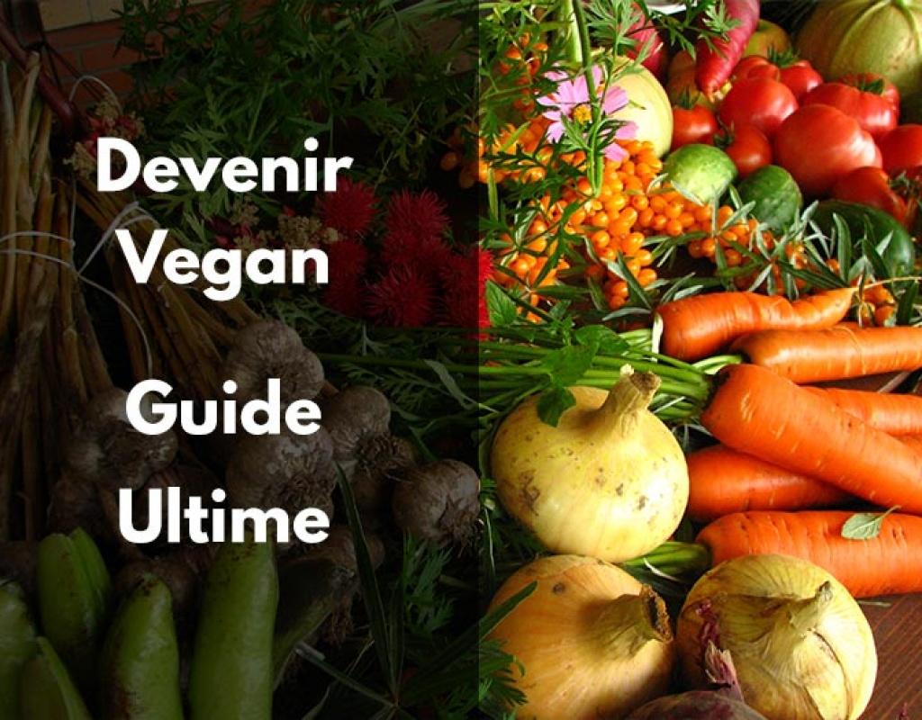 vegan, devenir, commencer, viande, végétarien, changer, laine, cuir, régime, protéine, végétale, vitamine