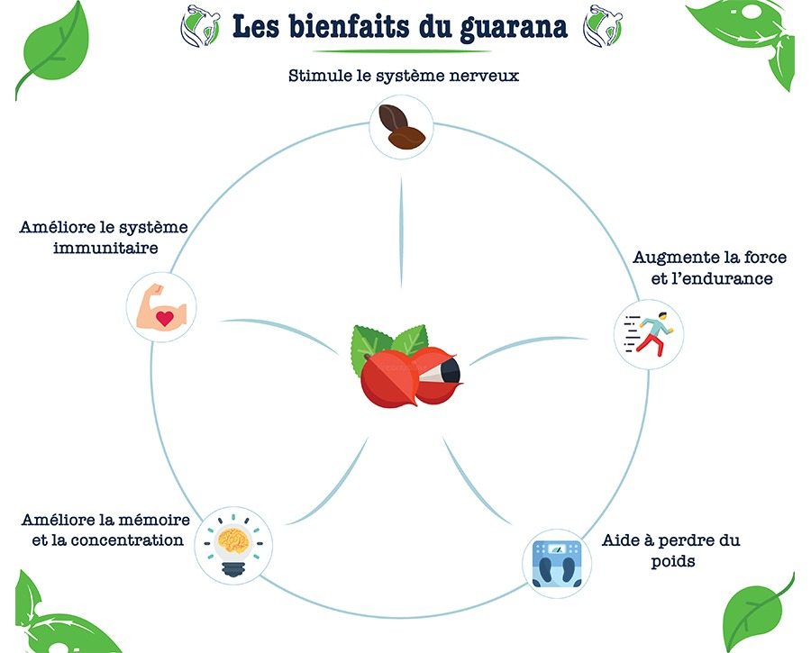 Bienfaits guarana