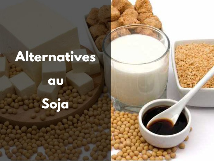 alternative soja, vegan, protéine, alternative, simili, vegetarien, vegetalien, viande, steak, remplacer