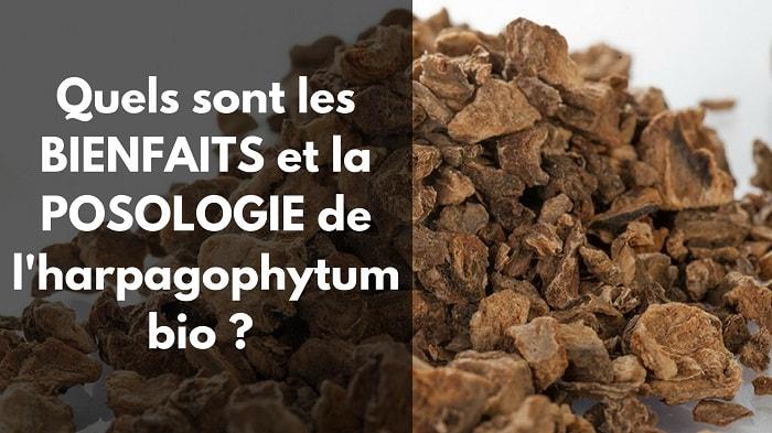 Harpagophytum bio bienfaits posologie avis