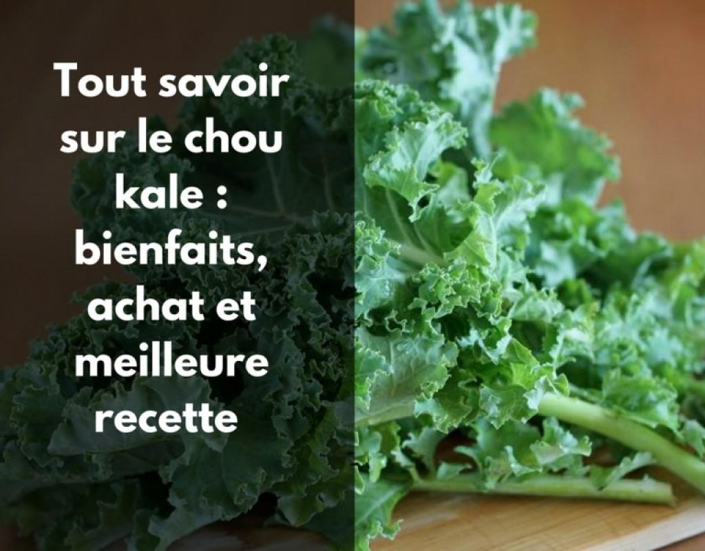 Quels sont les bienfaits du chou kale (chou frisé) ?