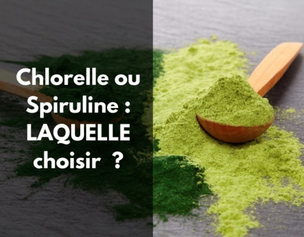 Comment choisir entre chlorelle ou spiruline en poudre ?