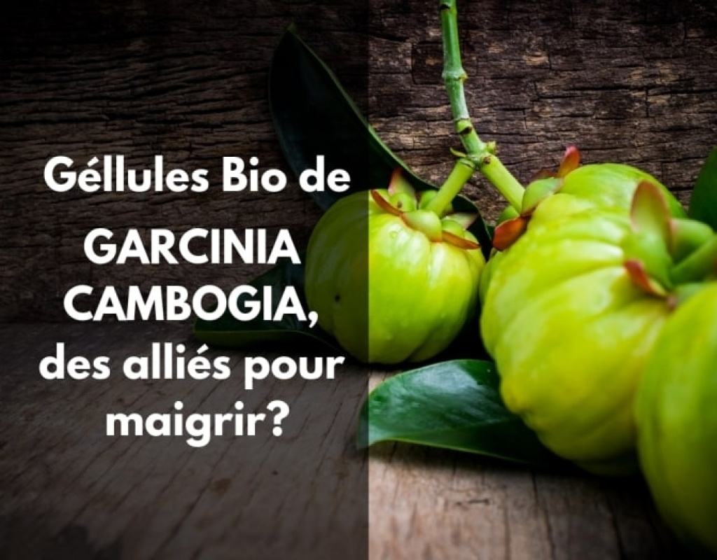 Garcinia cambogia bio maigrir gellule