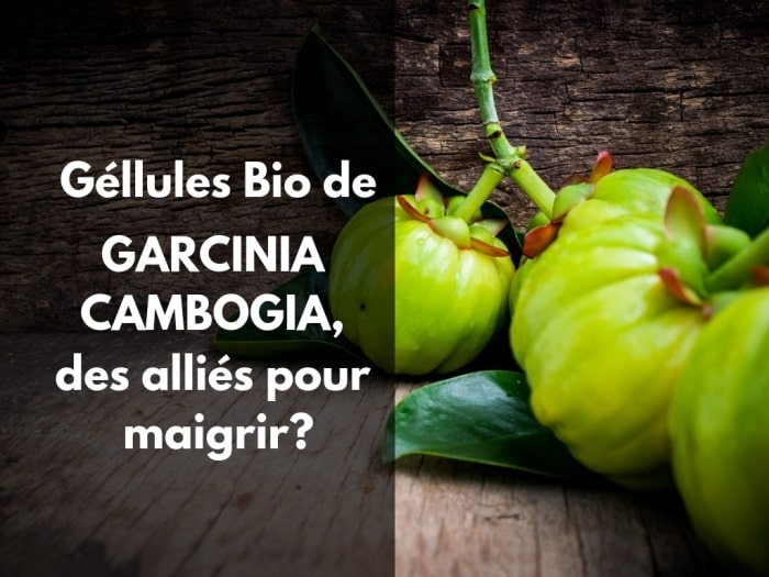 Les gellules bio de Garcinia cambogia font-elles maigrir ?