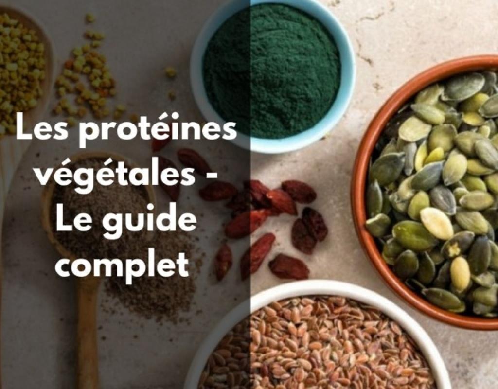 Quelles sont les meilleures sources en protéines végétales?