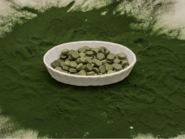 Quels sont les potentiels dangers de la chlorella ?
