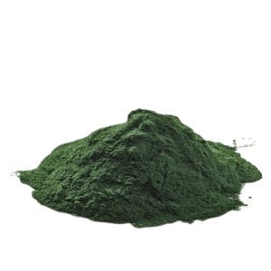 spiruline poudre